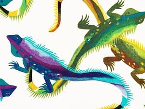White fabric with colourful iguanas pattern