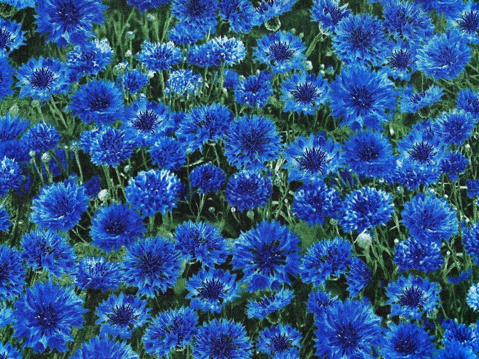 Cornflour Meadow Fabric