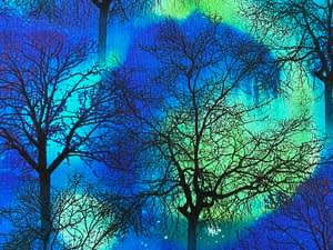 Dark blue fabric with aurora borealis pattern with silhouettes of a forest