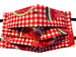 Red and white checked fabric with melon and ants pattern